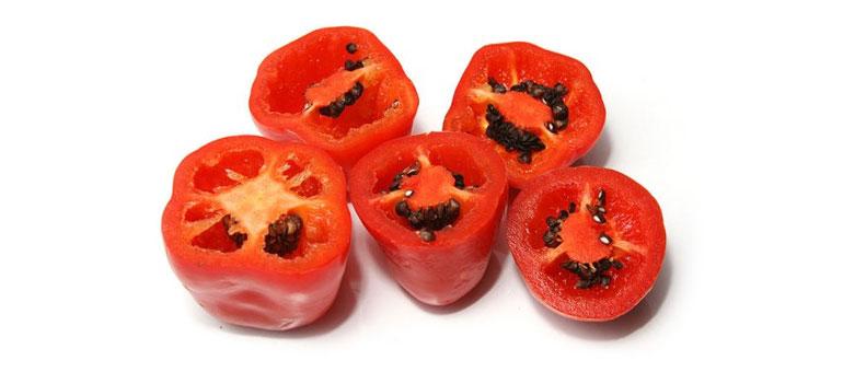 rocoto peppers shu
