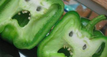 Creepy Bell Pepper Faces