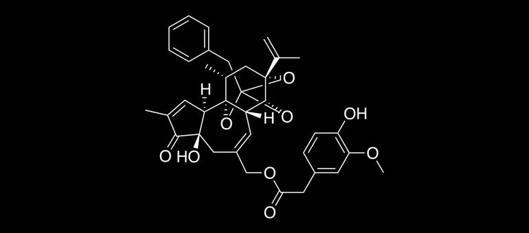 resiniferatoxin SHU